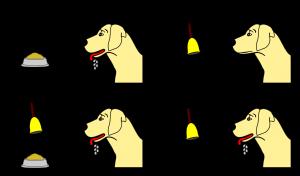 ایوان پاولف تعریف نظریه شرطی سازی کلاسیک پاولف
