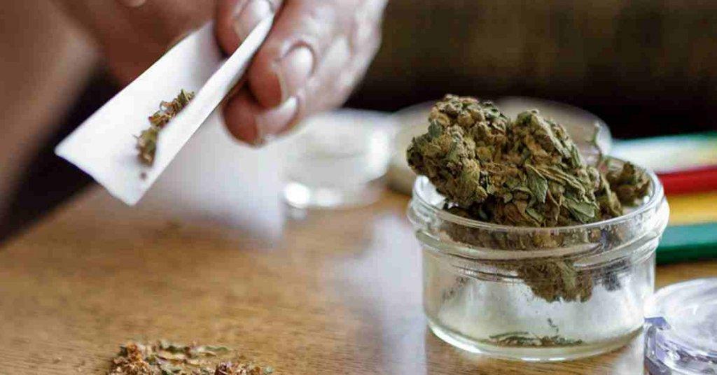 علل گرایش به ماریجوانا یا گل، عوامل اصلی را بشناسید 1